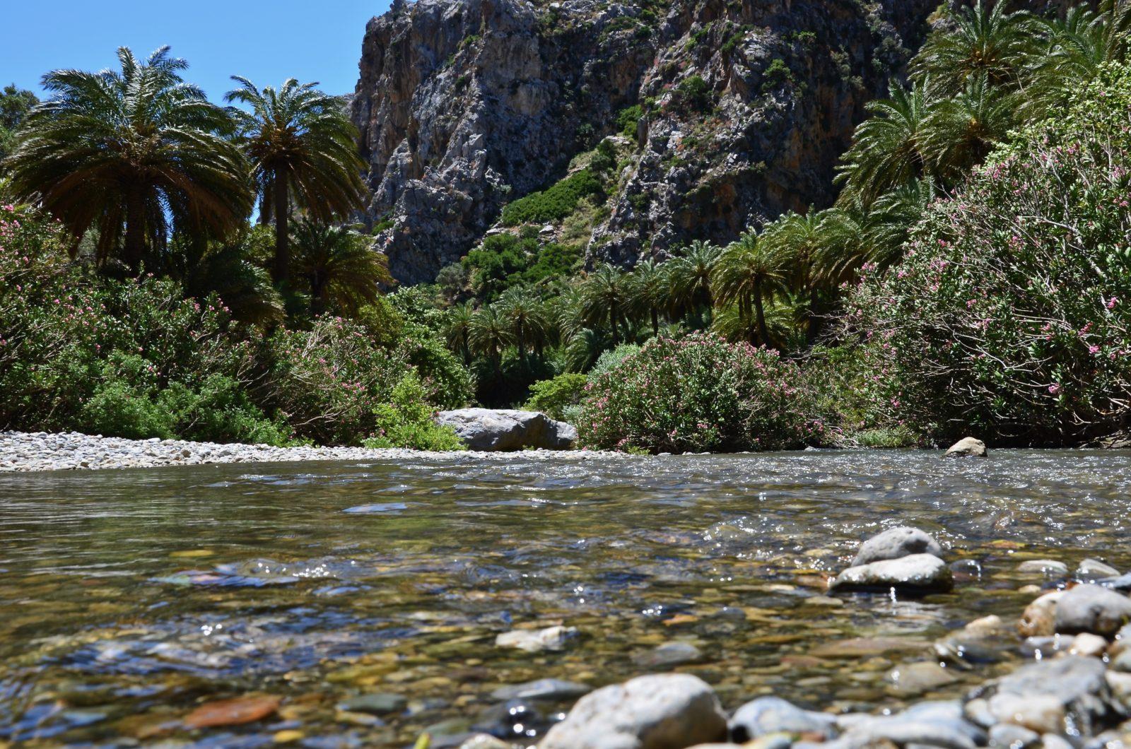 Preveli River - Rethymnon